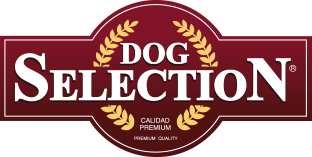 Dog Selection